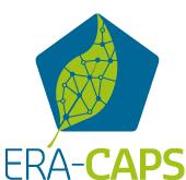 Logo ERA-CAPS