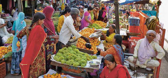A market in Bangalore, India. © Isabelle Aeberli, Philip Herter
