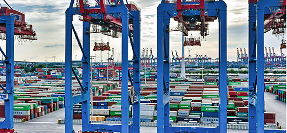 View of a port with specialized handling facilities in the foreground and freight containers in the background.
