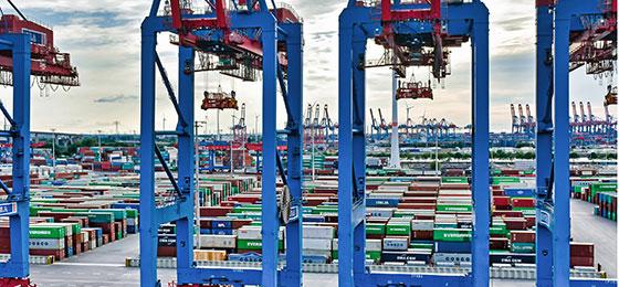 Vue d'un port avec des installations de manutention spécialisées au premier plan et des conteneurs de fret à l'arrière-plan.