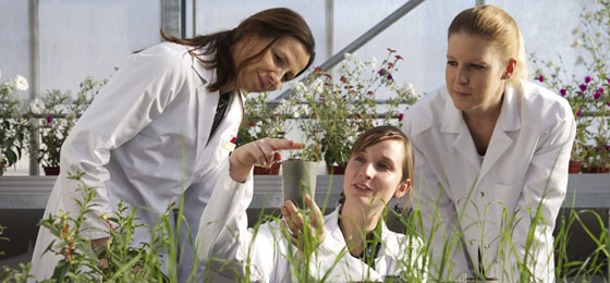 This picture shows three young researchers at work  © Severin Nowacki